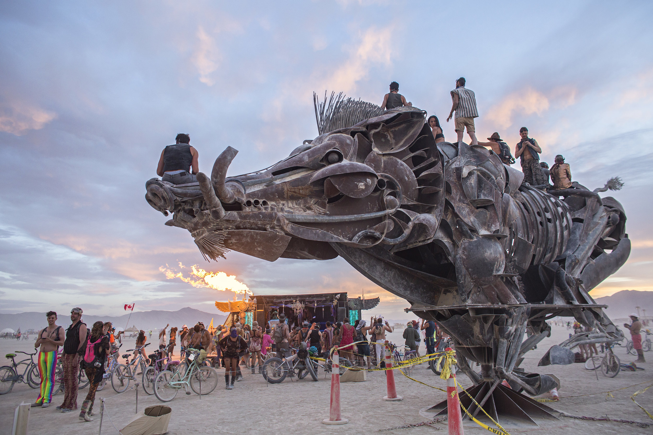 hog-sculpture-burning-man-black-rock-desert-nevada.jpg