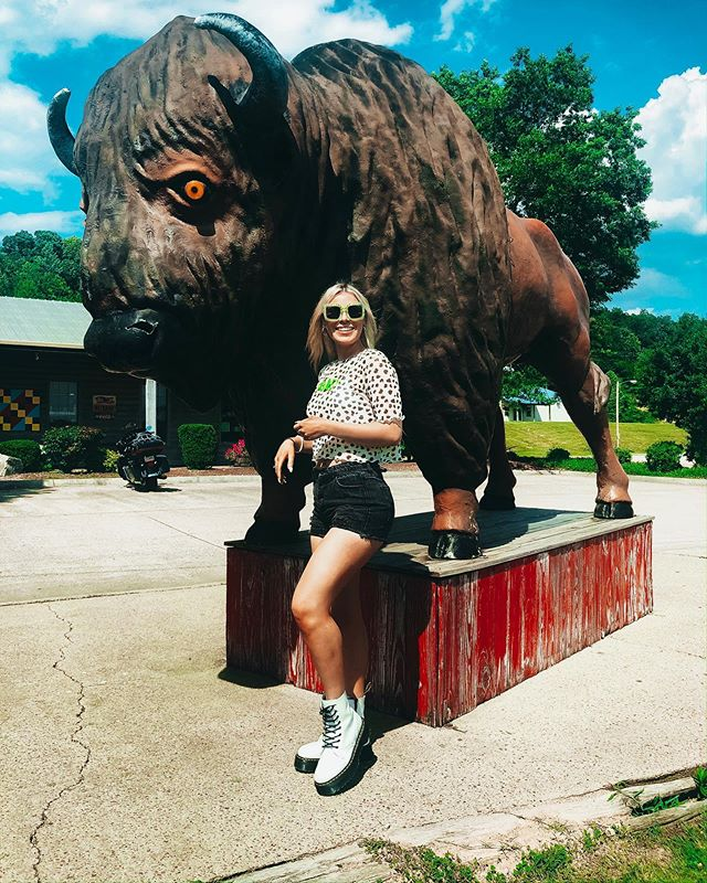 whaddup memphis?? first time here for @springboardfest this weekend. enjoy this pic of me and a buffalo 🤪🥴
