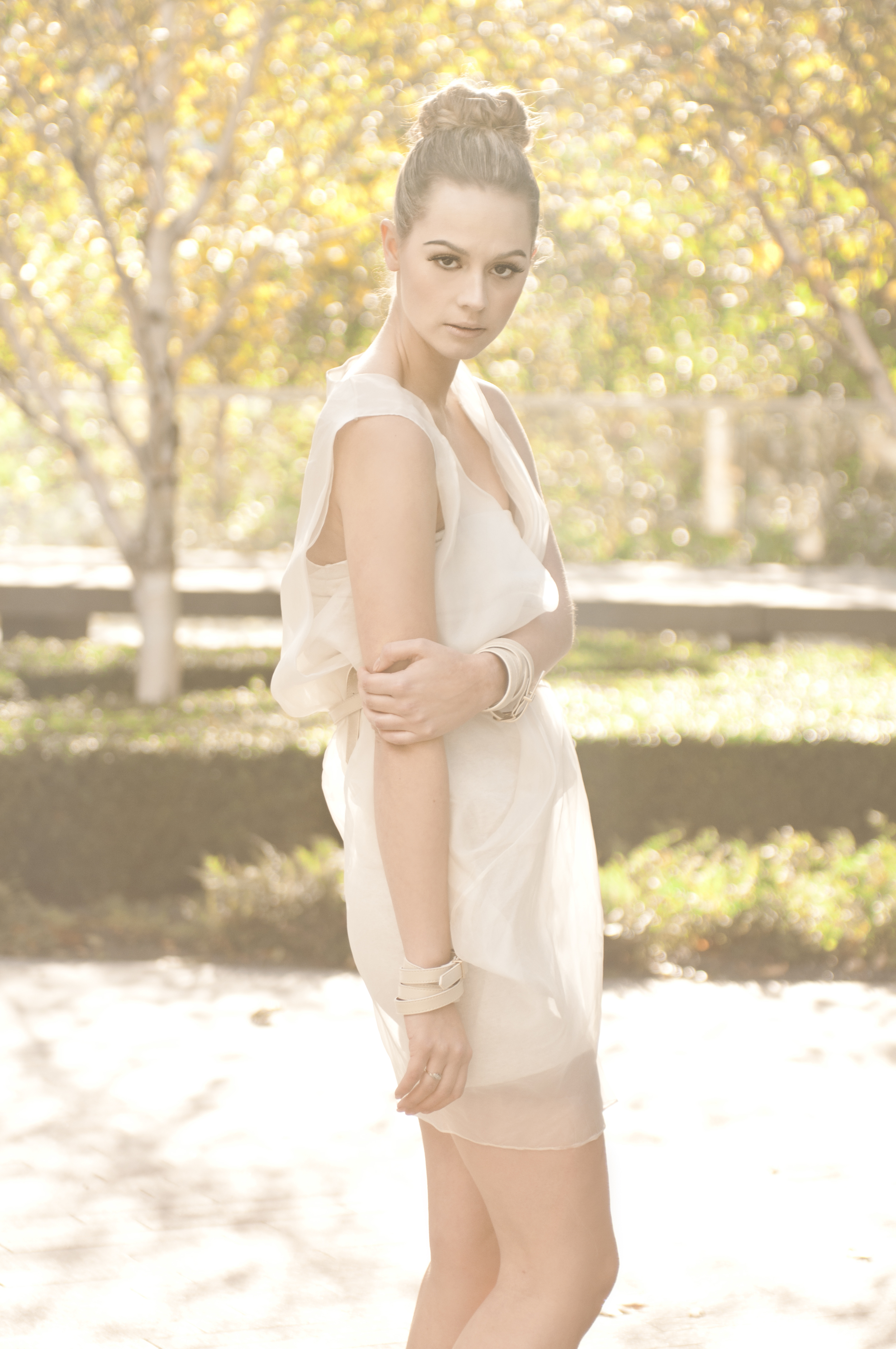 Spring Sheer Silk Organza Dress.jpg