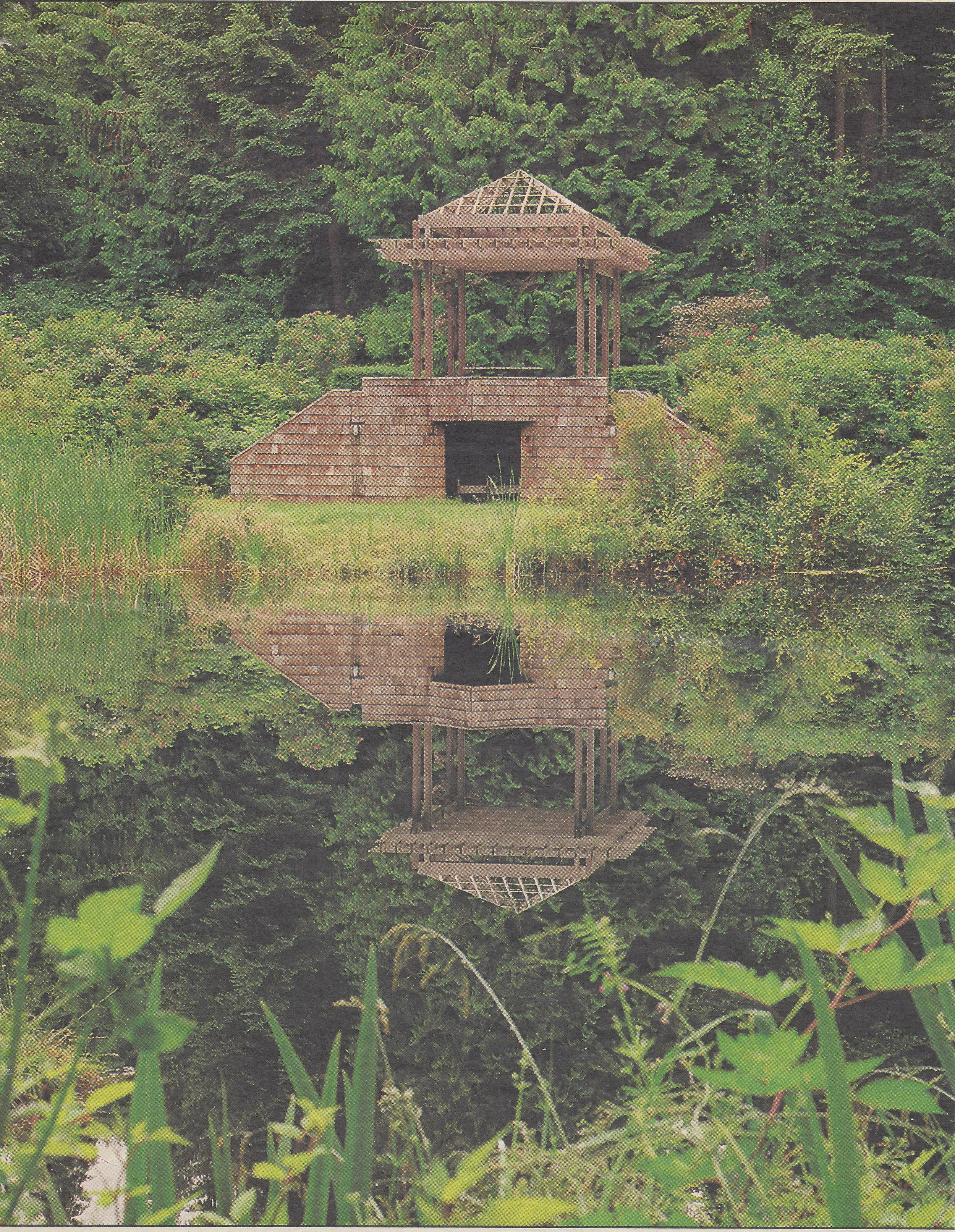 pond reflectiona.jpg