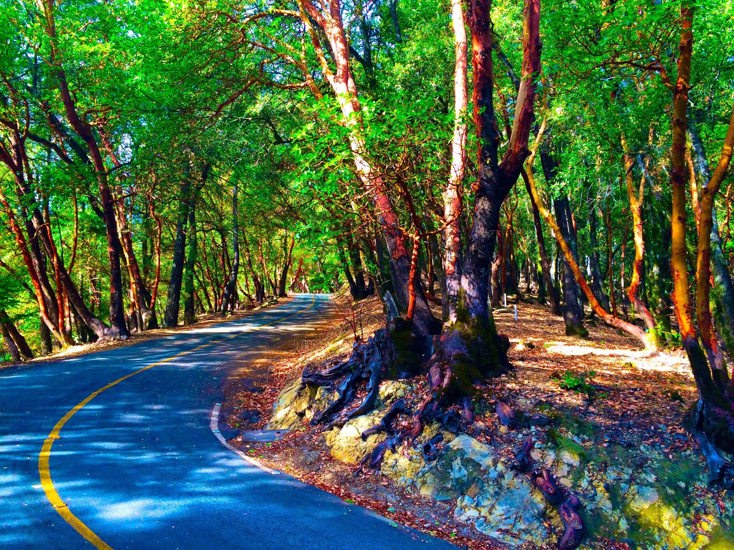 Scotts Valley, CA