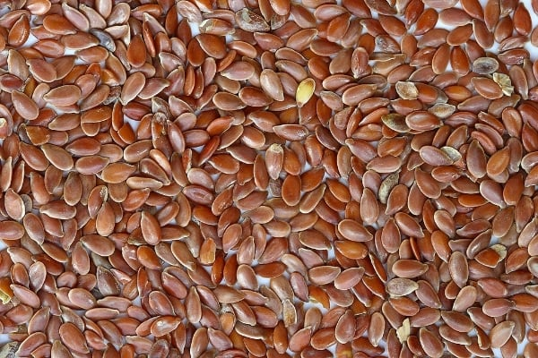 Flax seeds for flax egg