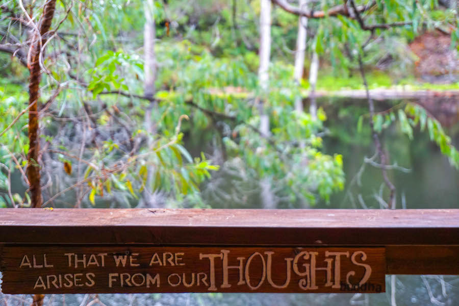 Billabong Retreat Review | Sproutly Stories