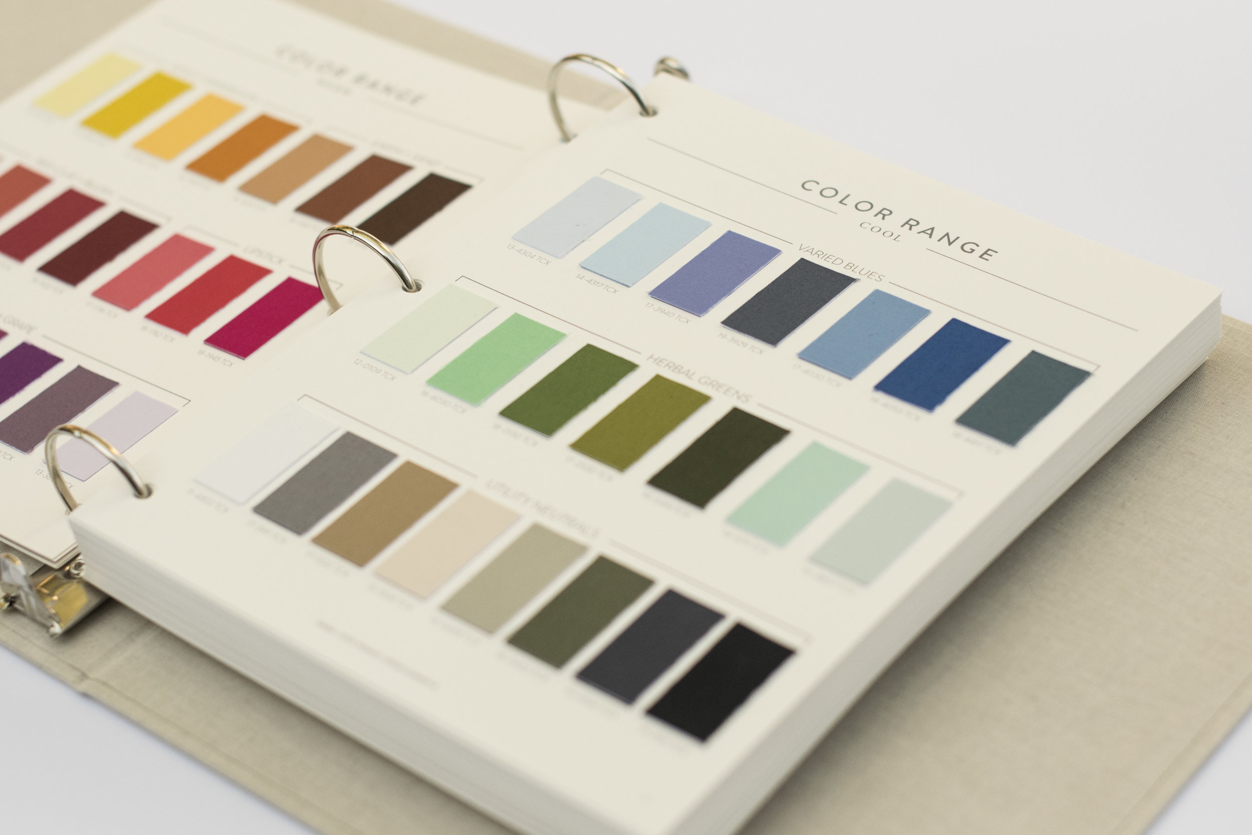 Full Color Forecast with Pantone® Swatches and Digital Color Files