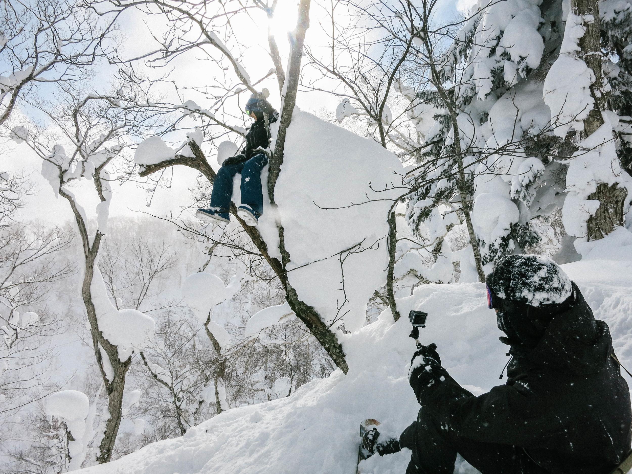 Only in Hokkaido
