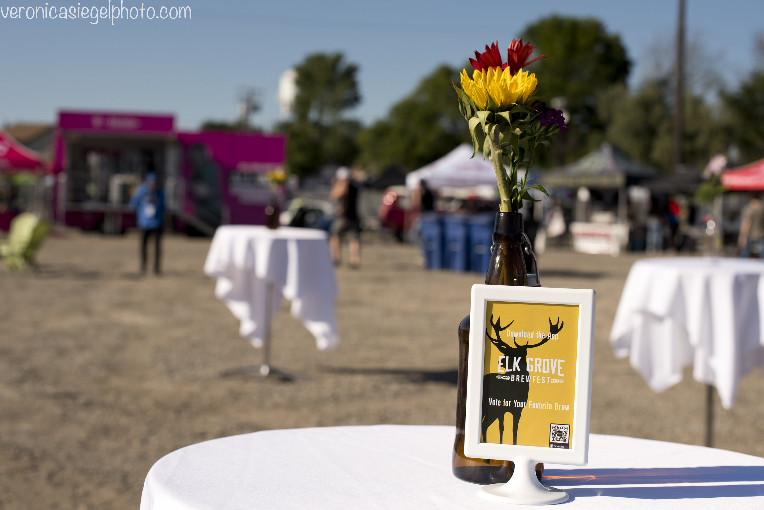 Elk Grove Brewfest 2019