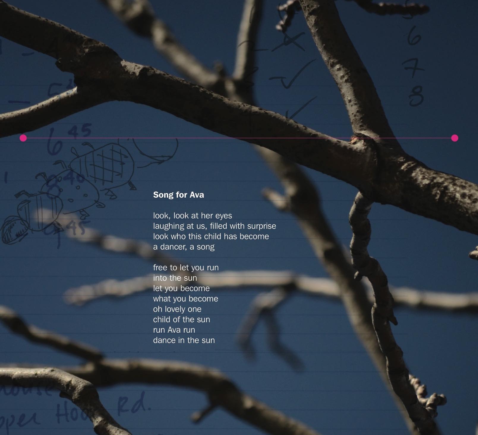 Song of Ava_album_sleeve 2.jpeg