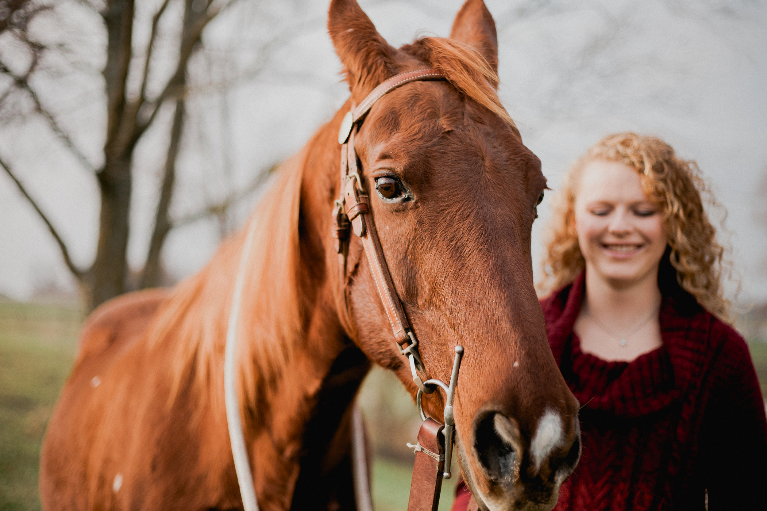 Girl smiles in background as beautiful Thoroughbred mare takes center focus. © Merry Ohler Creative, 2019. Photo by Merry Ohler, wedding photographer Kansas City.