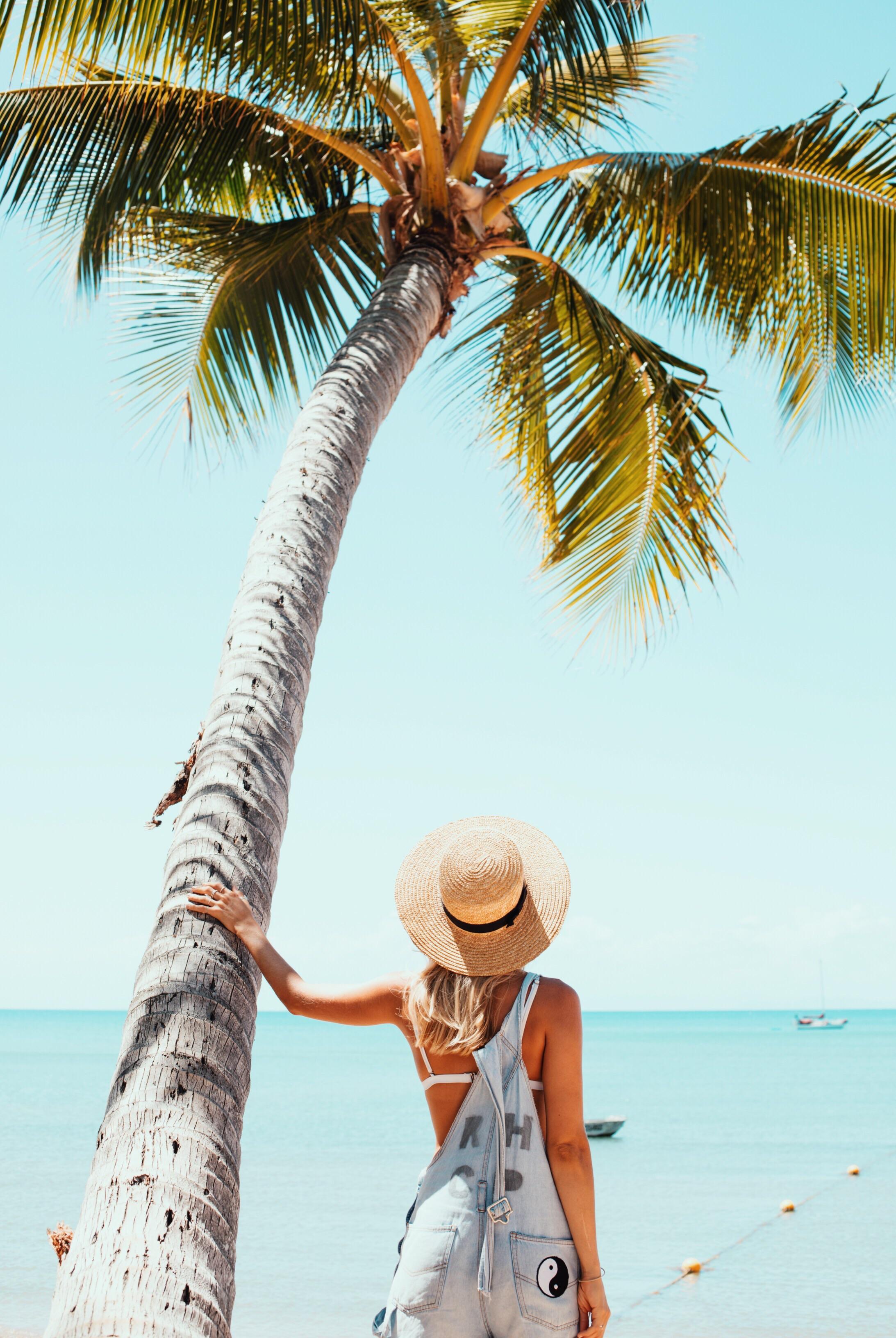 Beneath the shady palms