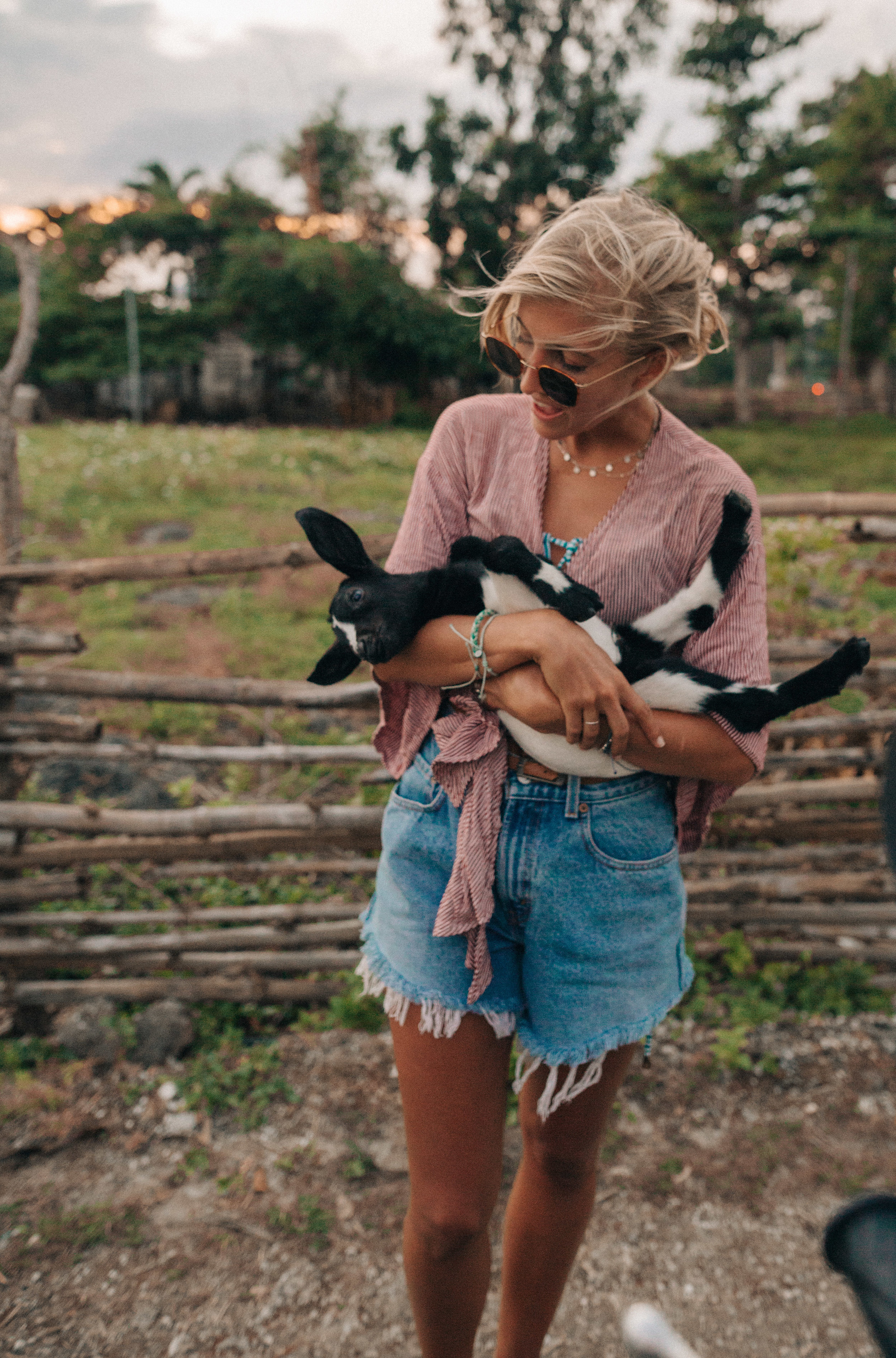 Cuddles to the baby village goats
