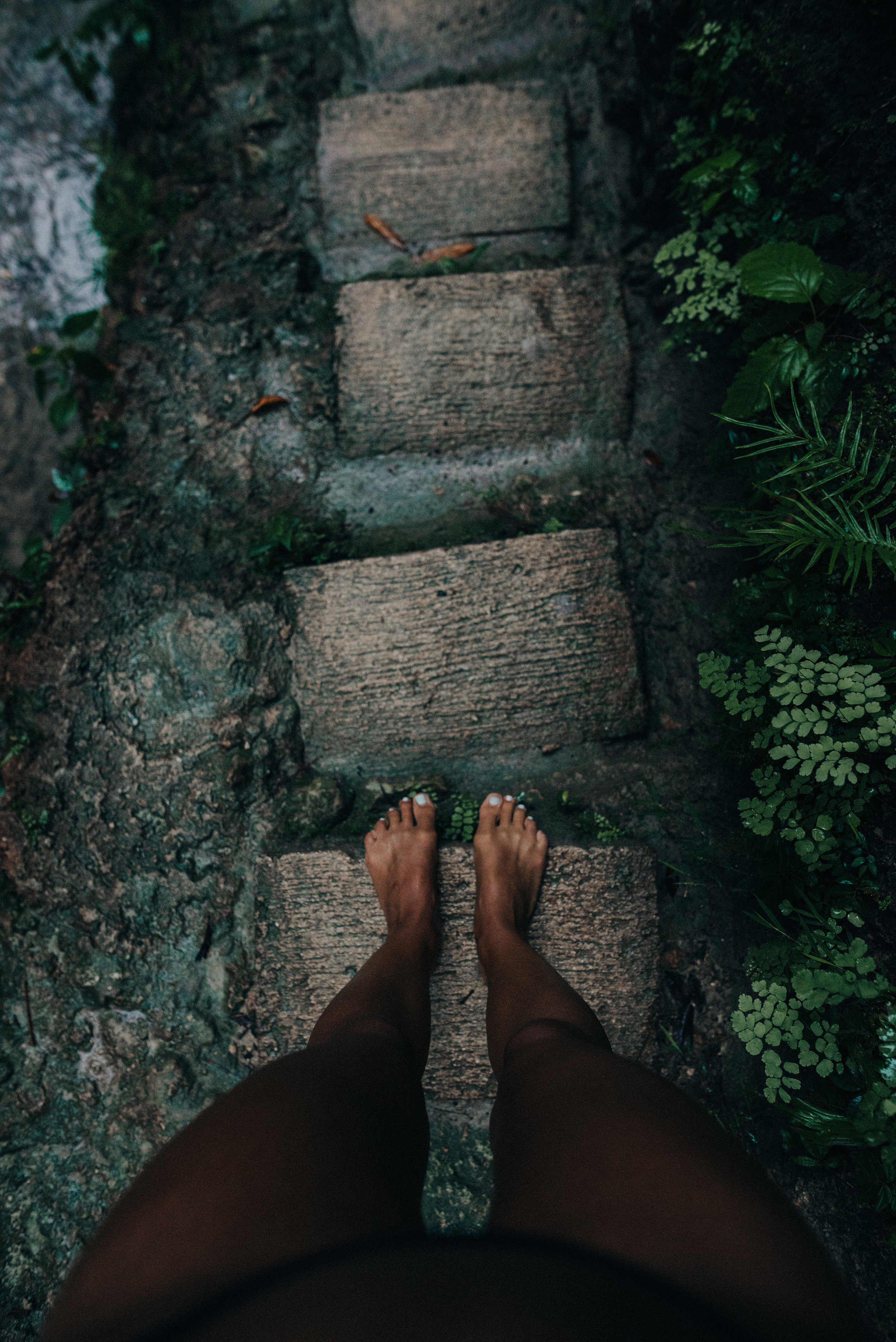 Lush greens and slippery steps