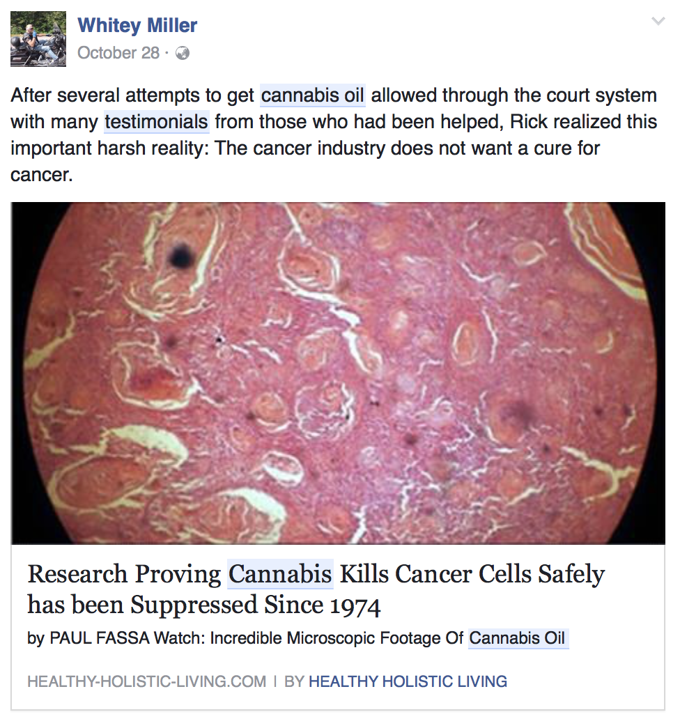 cannabis-kills-cancer-cells.png