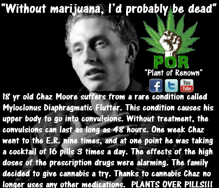 cannabis-myloclonus-diaphragmatic-flutter.png