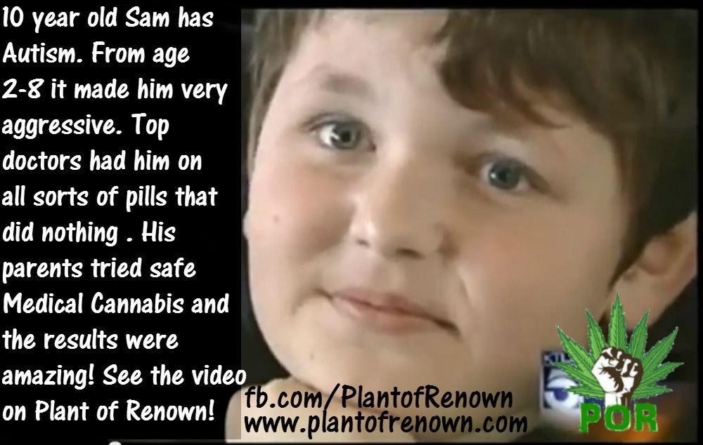 cannabis-oil-and-autism.jpg