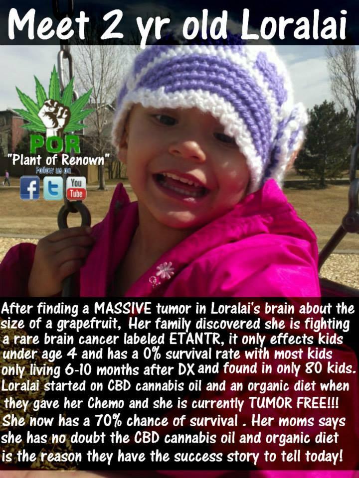 cannabis-oil-and-brain-tumor.jpg
