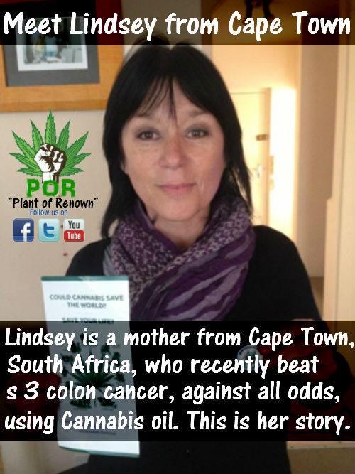 cannabis-oil-cures-colon-cancer.jpg