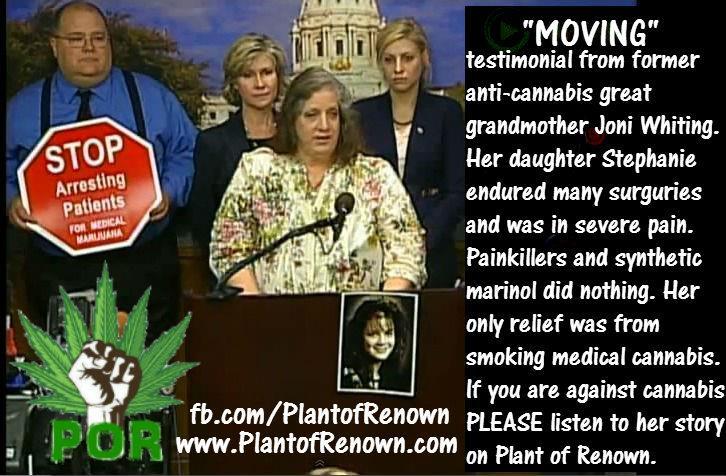 cannabis-story.jpg