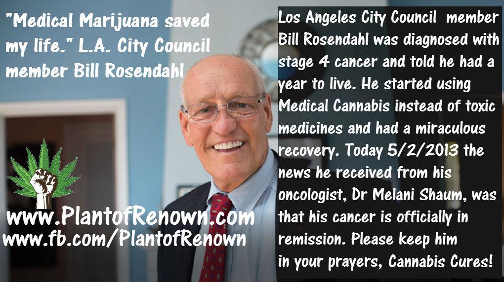 medical-marijuana-saved-my-life.jpg