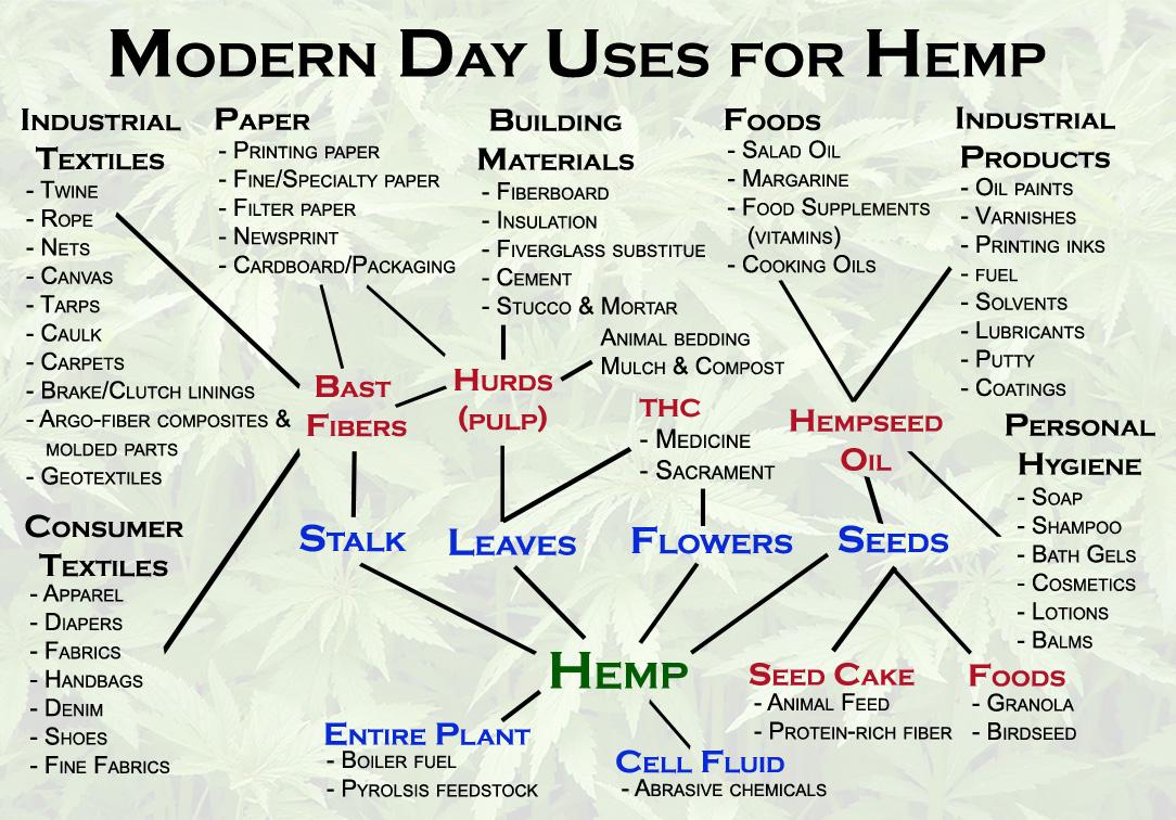 modernday-uses-of-hemp.jpeg