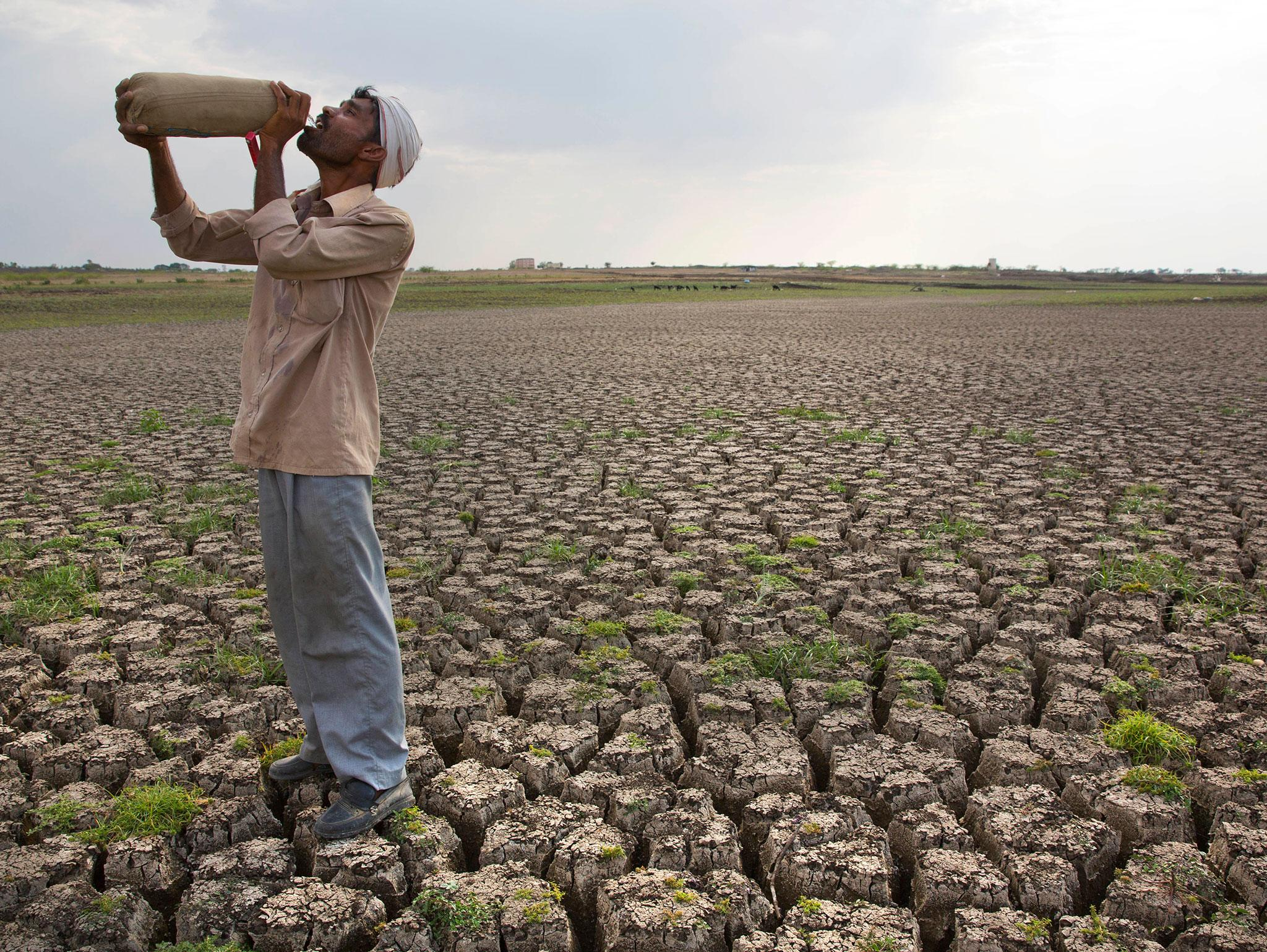 parched-agricultural-land-india.jpg