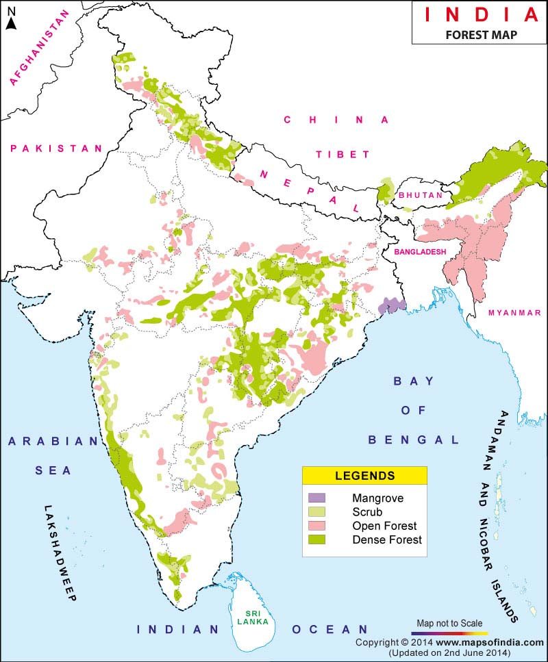 IDEAL  :- One-third of the total land in India should be covered by forests.  REALITY :- Forests cover only 24% of the country's total land area.