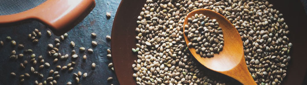 cannabis hemp seeds