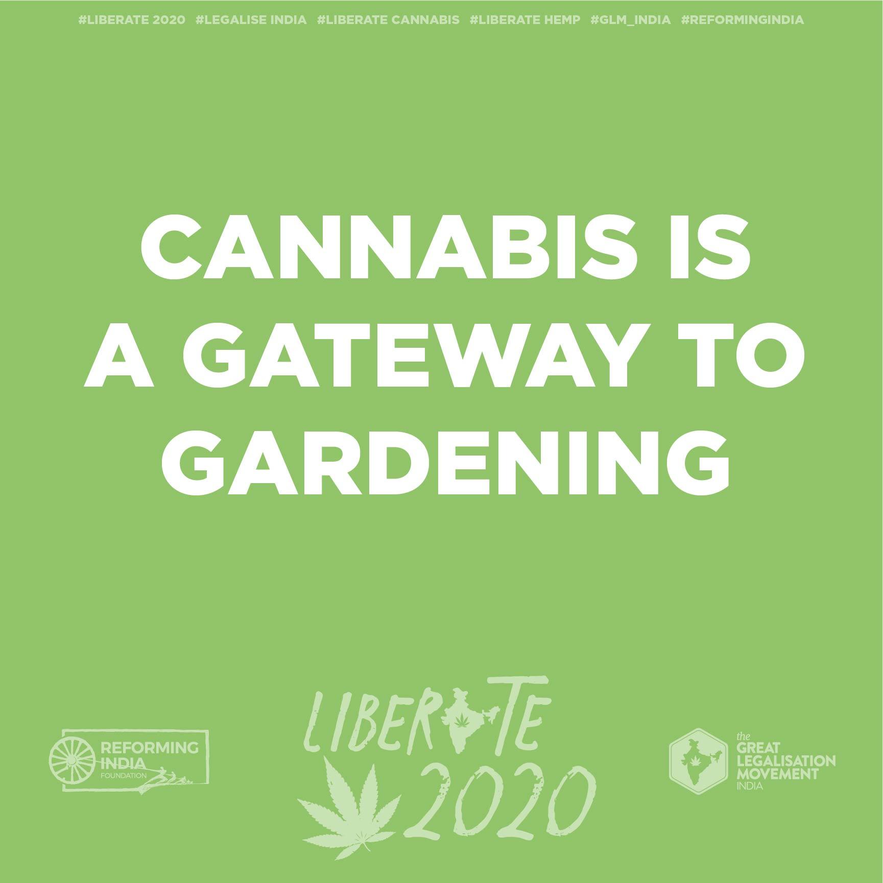 cannabisArtboard 1 copy 10-50.jpg