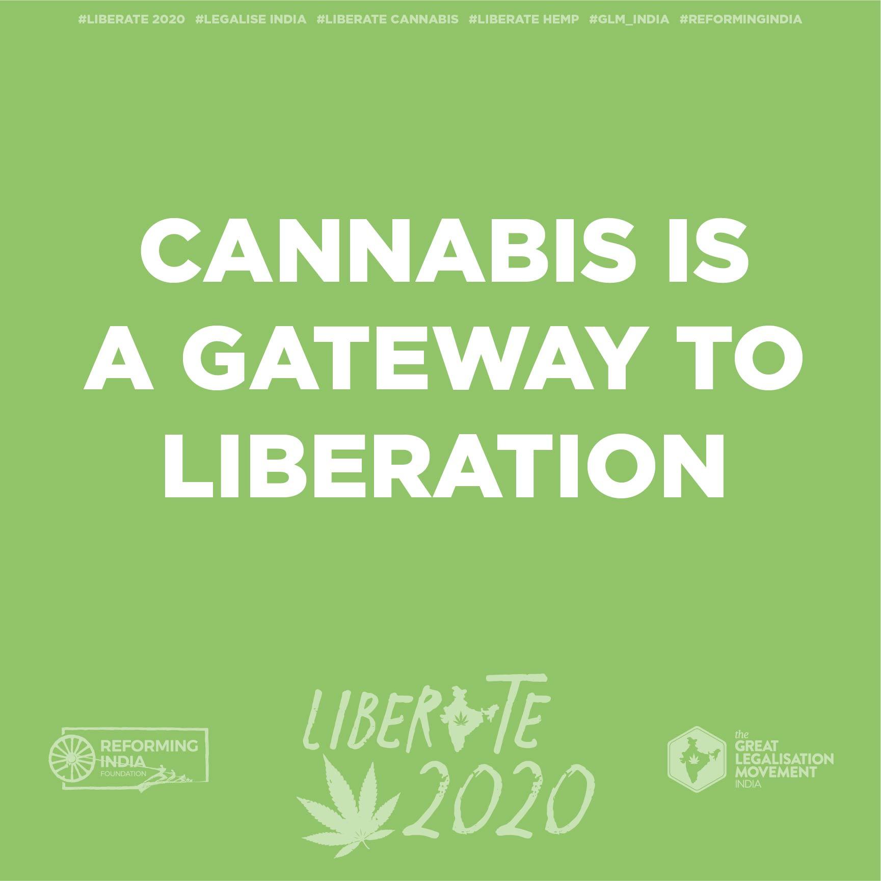 cannabisArtboard 1 copy 18-50.jpg