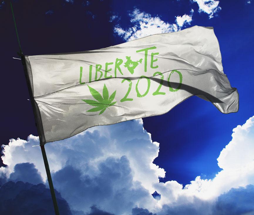 liberate2020-flag-1.jpg