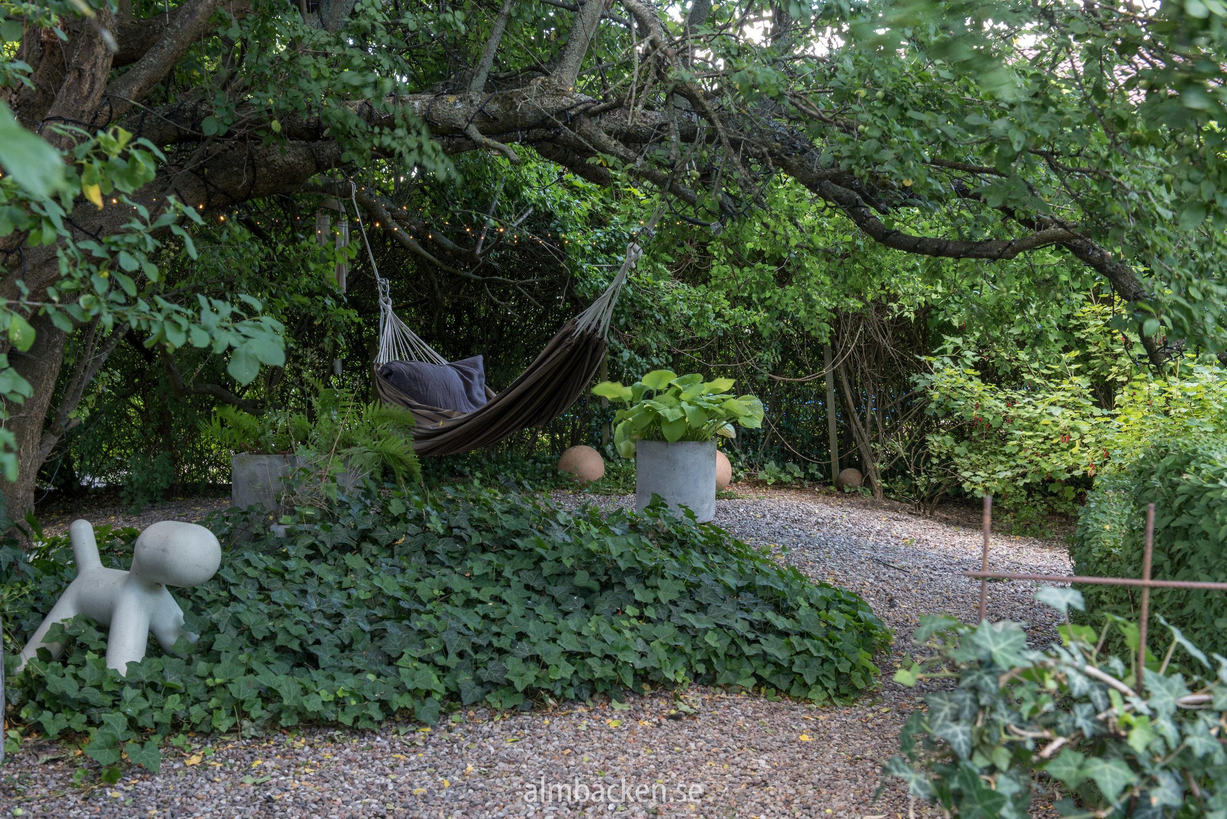 Charltottas trädgård-15.jpg