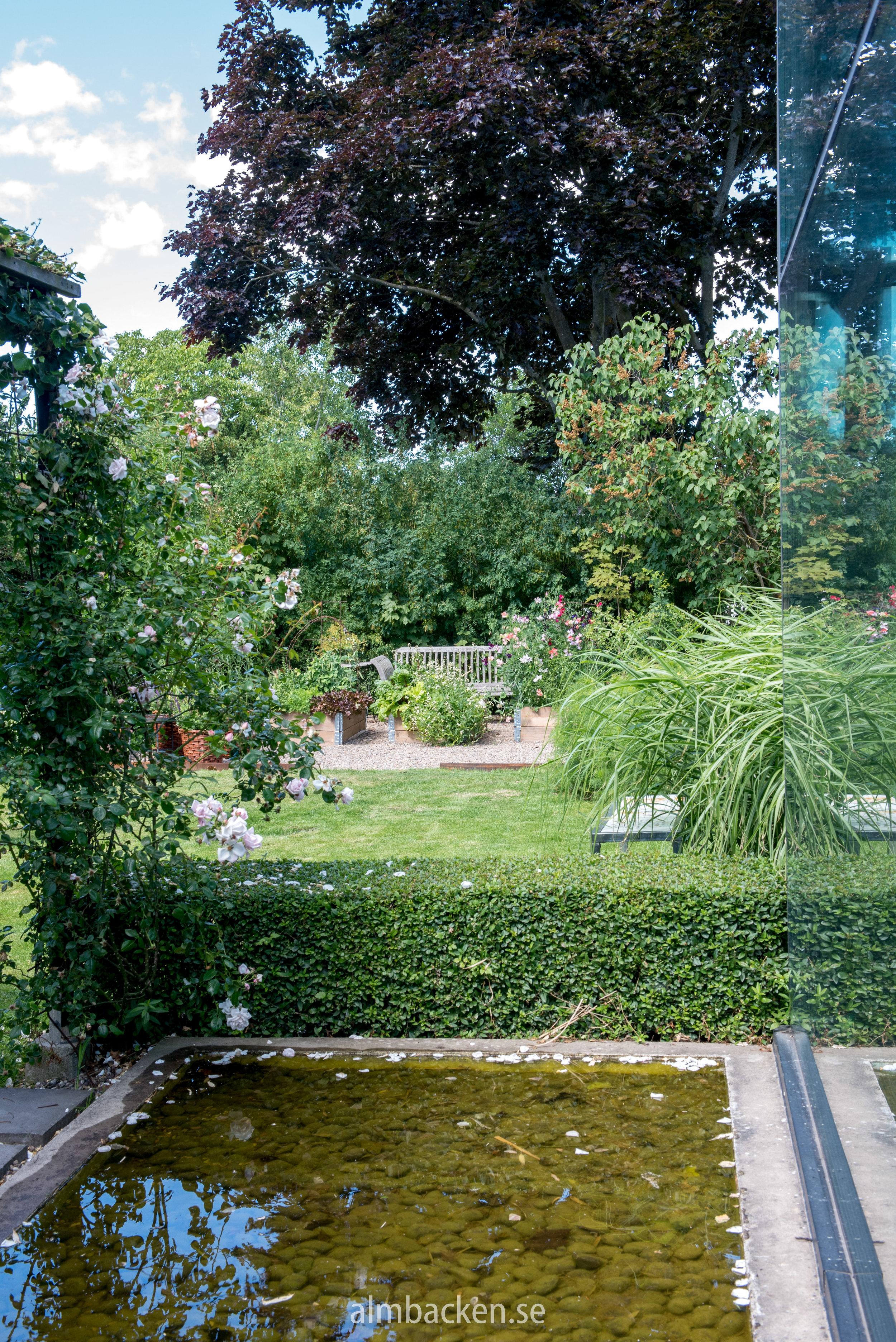 Charltottas trädgård-19.jpg