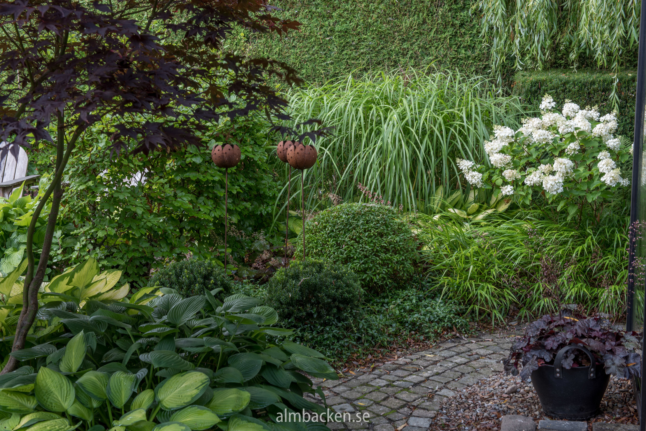 Hydrangea paniculata 'Silver Dollar', Miscanthus sinensis 'Malepartus', Hakonechola Macra, Vinca Minor, Hosta 'Gold Standard'