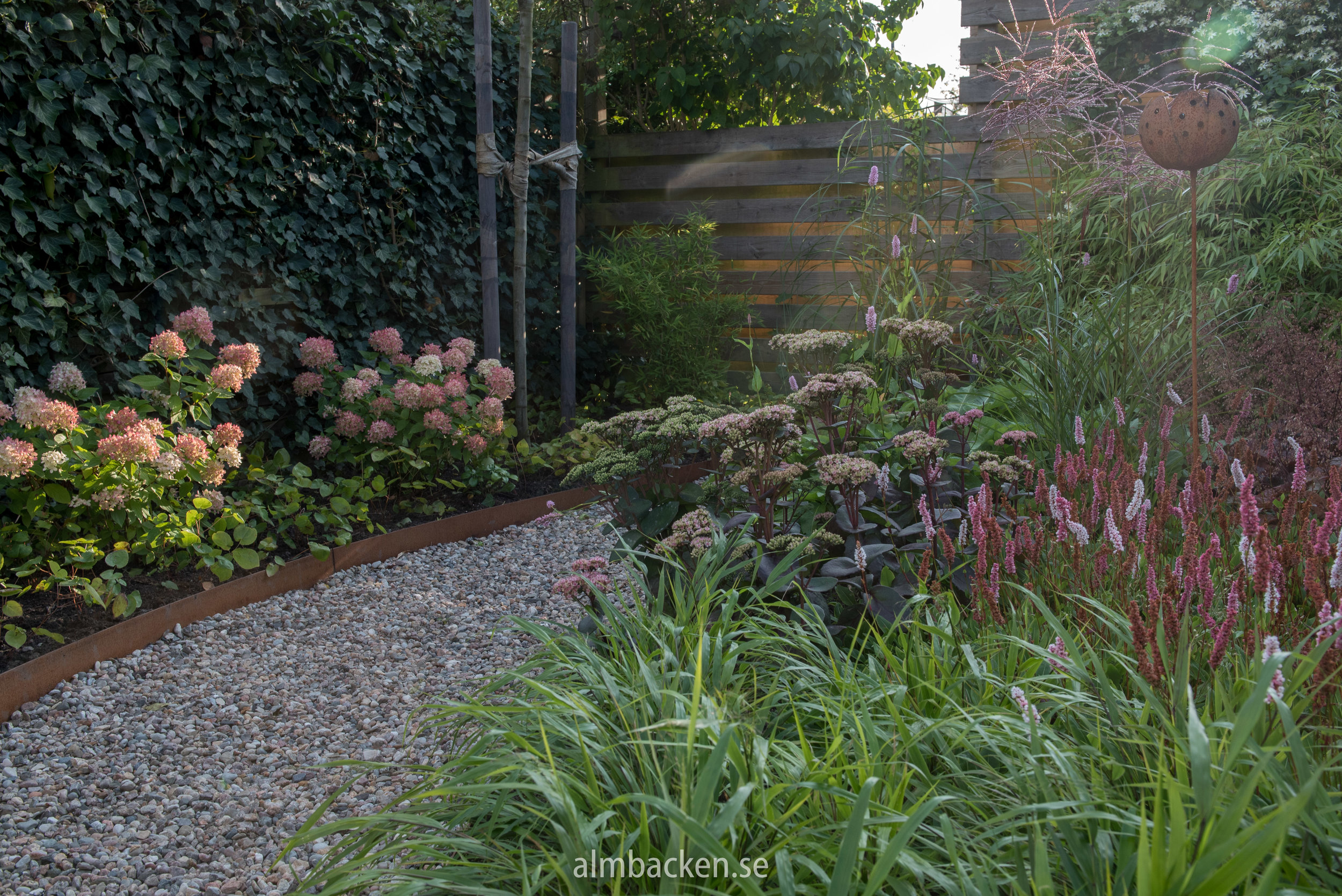 almbacken-tradgardsdesign-hakonegräs-hortensia-littlelime.jpg