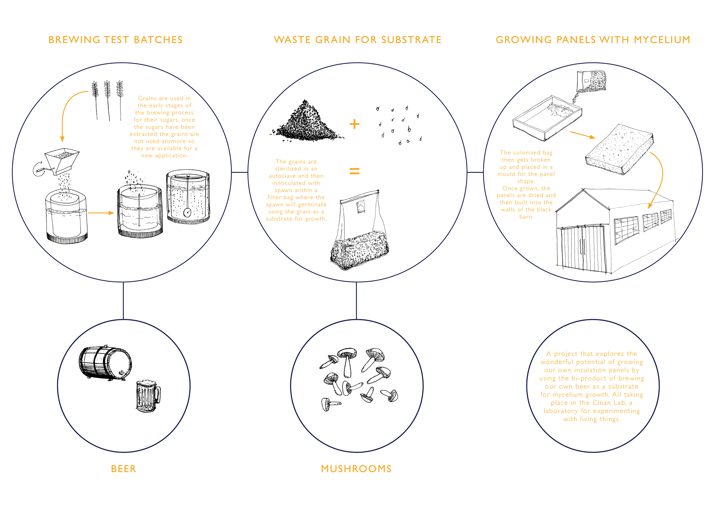 The inputs and outputs of combining two processes: brewing and growing mycelium
