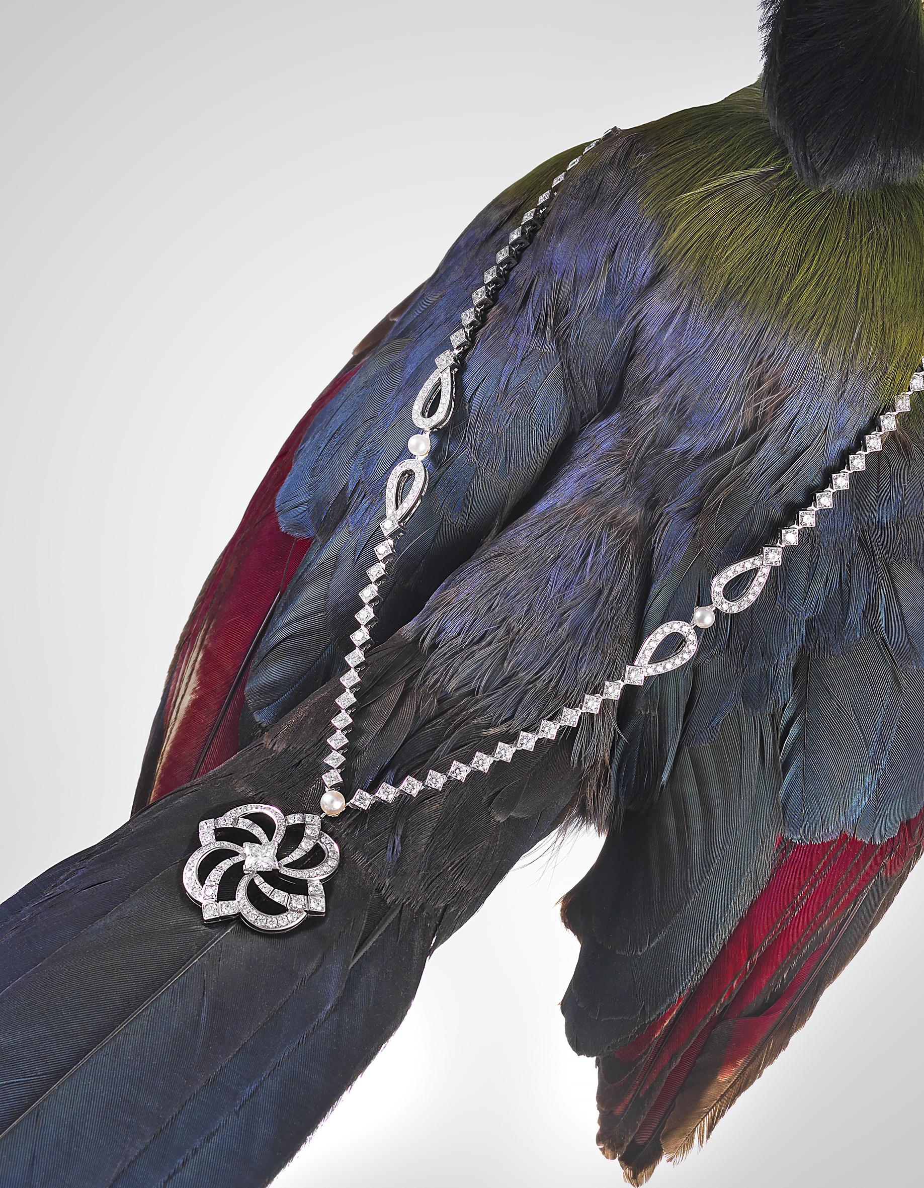 High jewellery-bird main.jpg