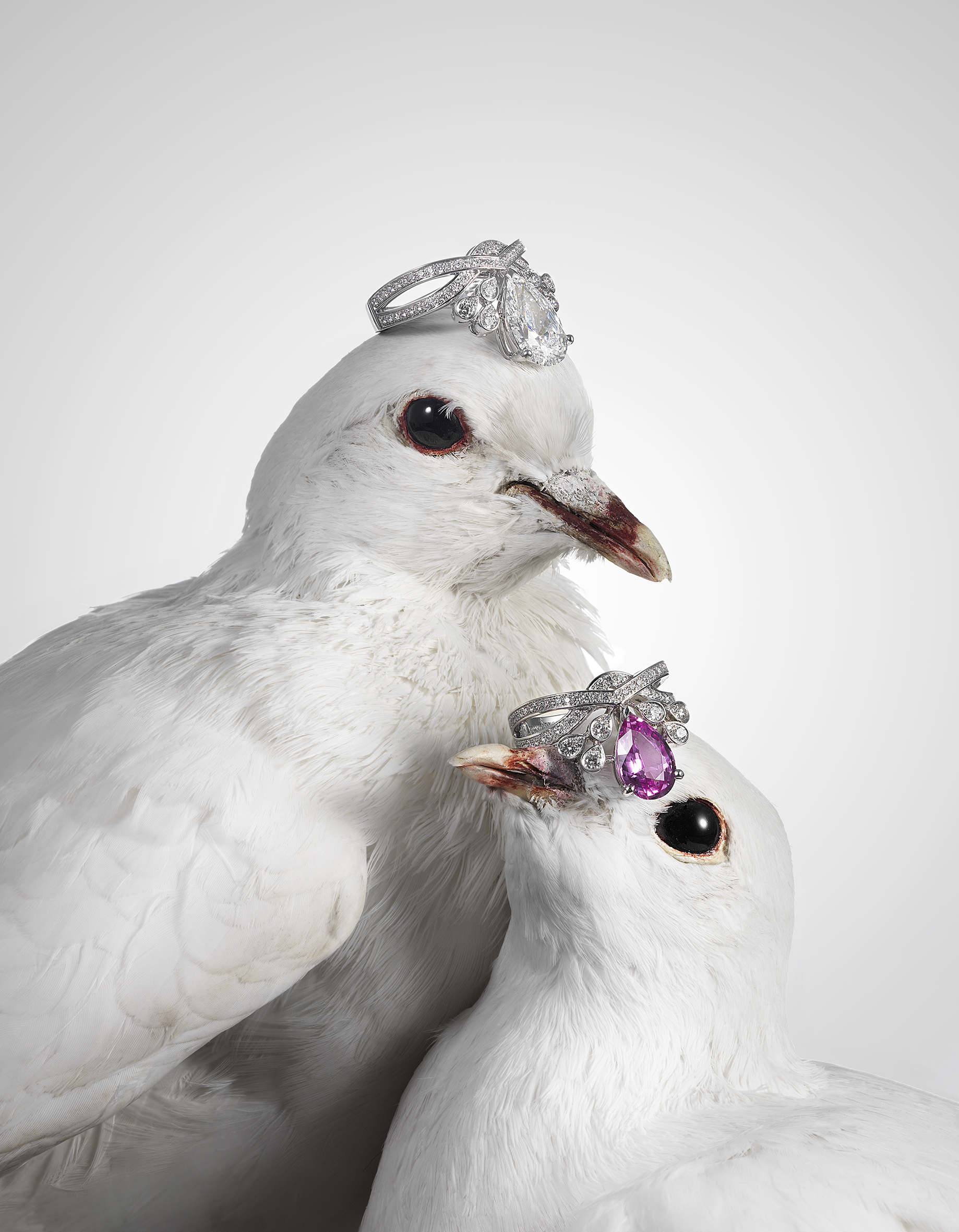 High Jewellery-doves.jpg