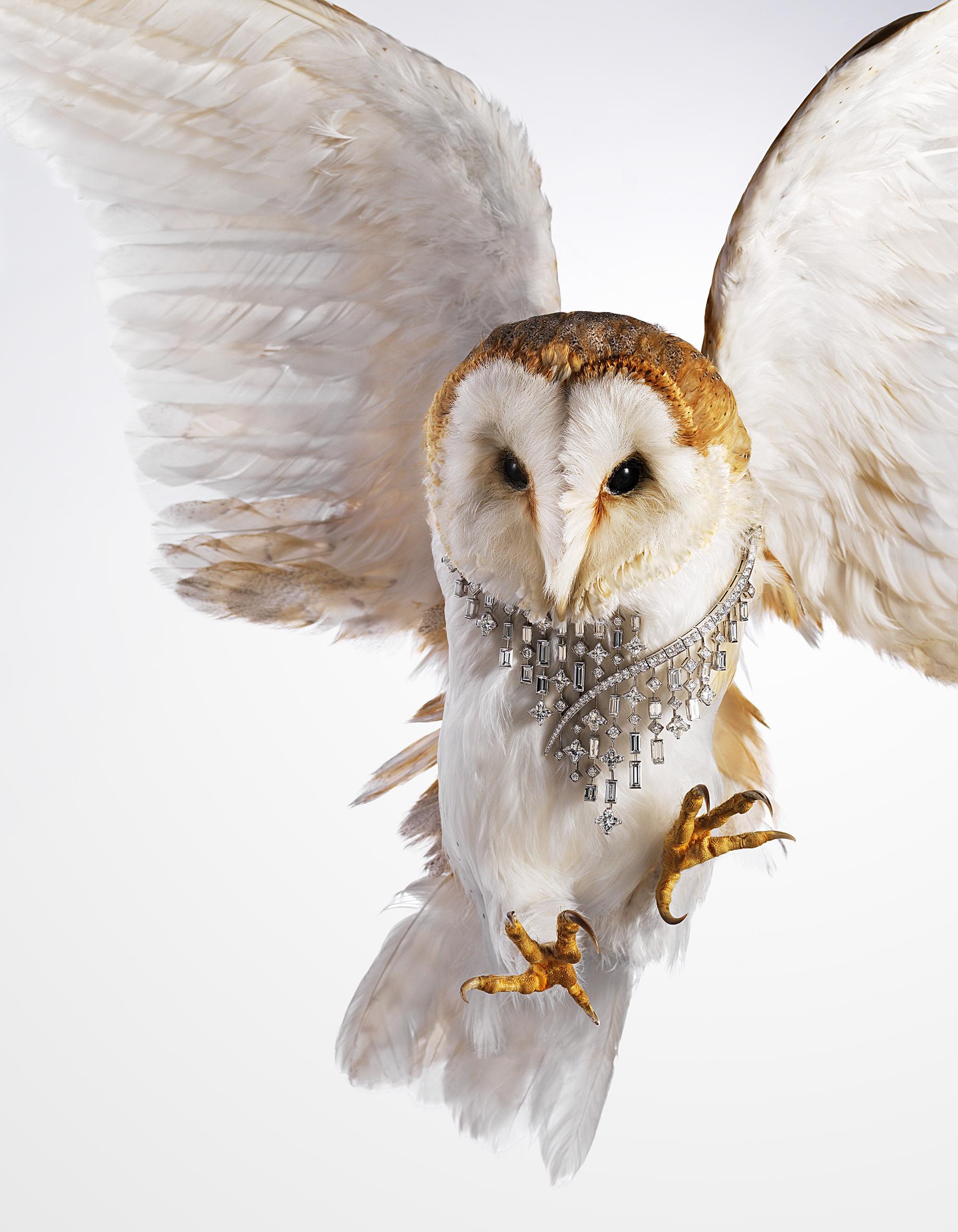 high jewellery-owl.jpg