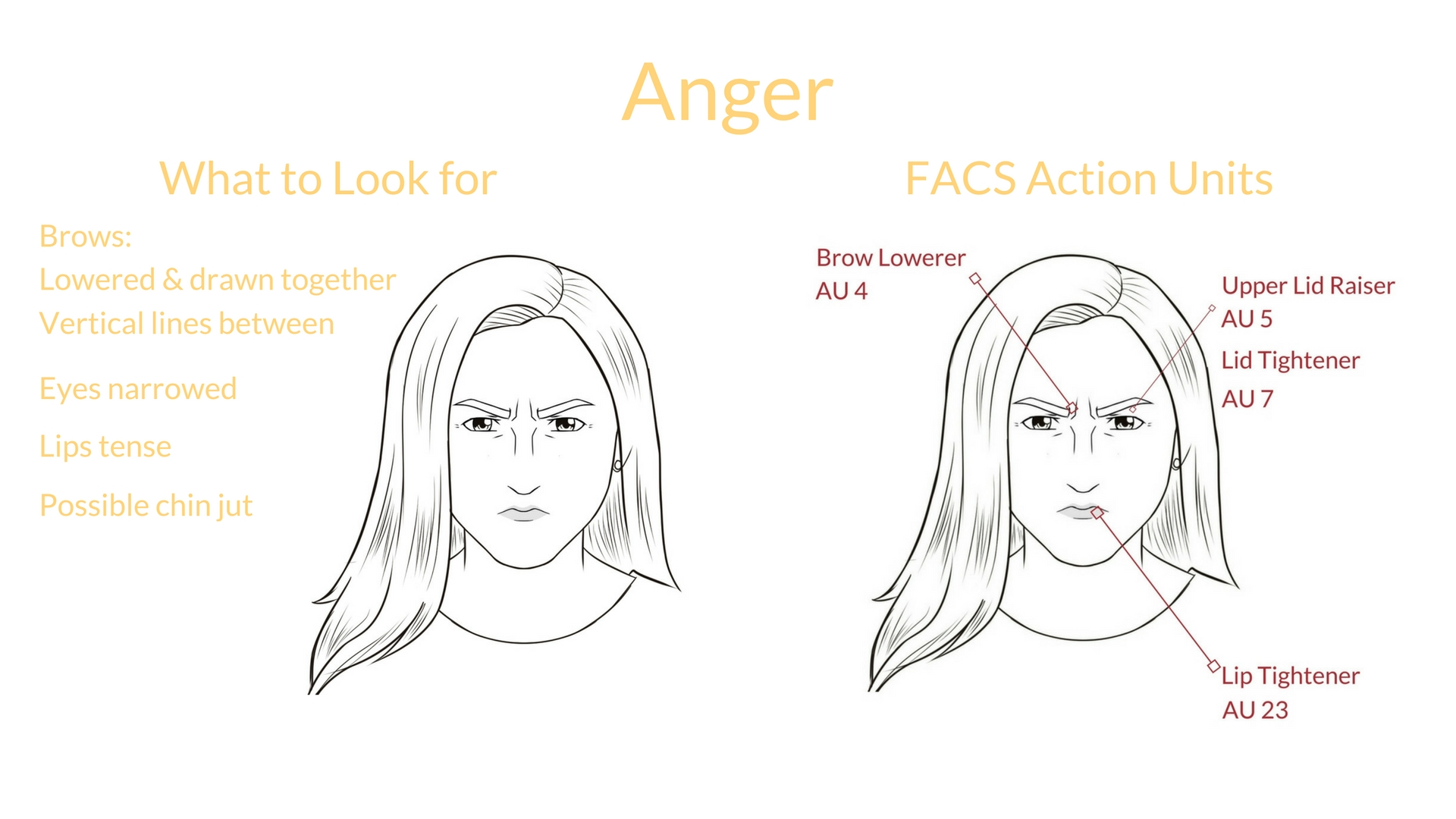 Universal Expression Anger