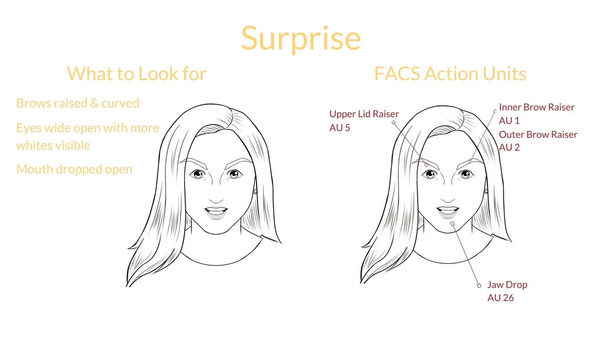 Universal Expression Surprise