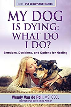 My dog is dying.jpg