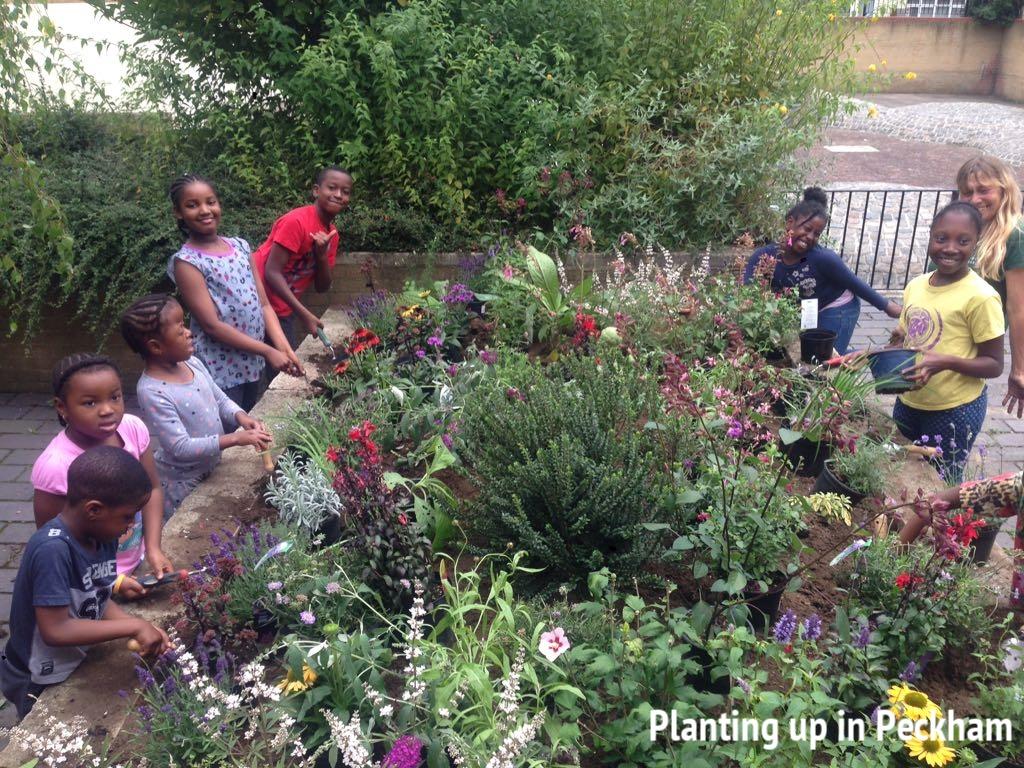 Planting up in Peckham
