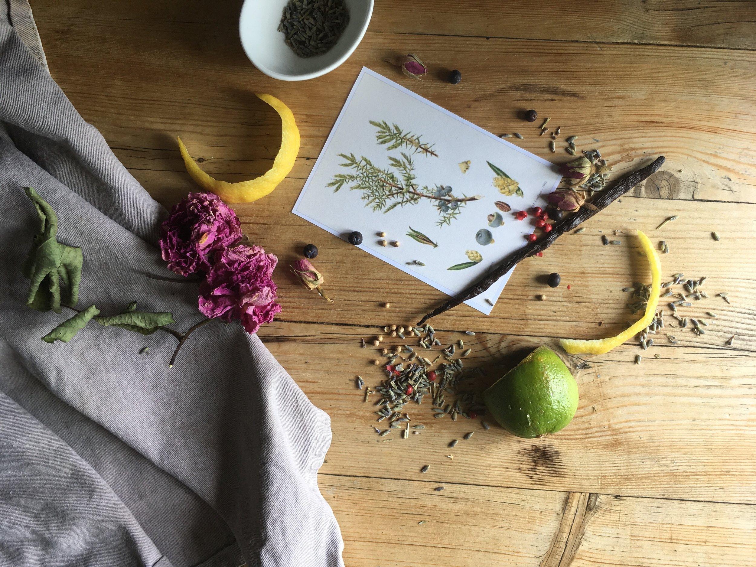 gin botanicals shot2.jpg