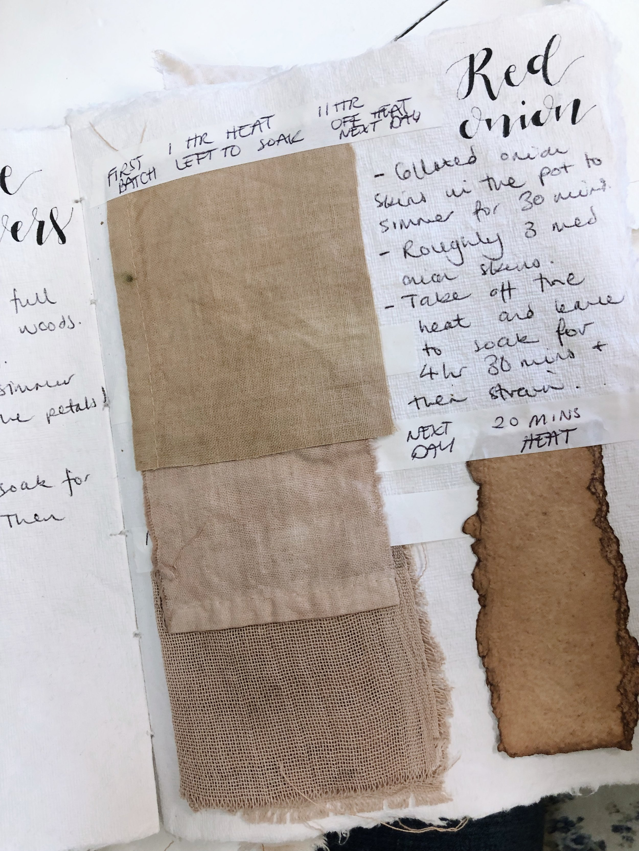A snippet of EdieRoseAshley's beautiful botanical dye journal