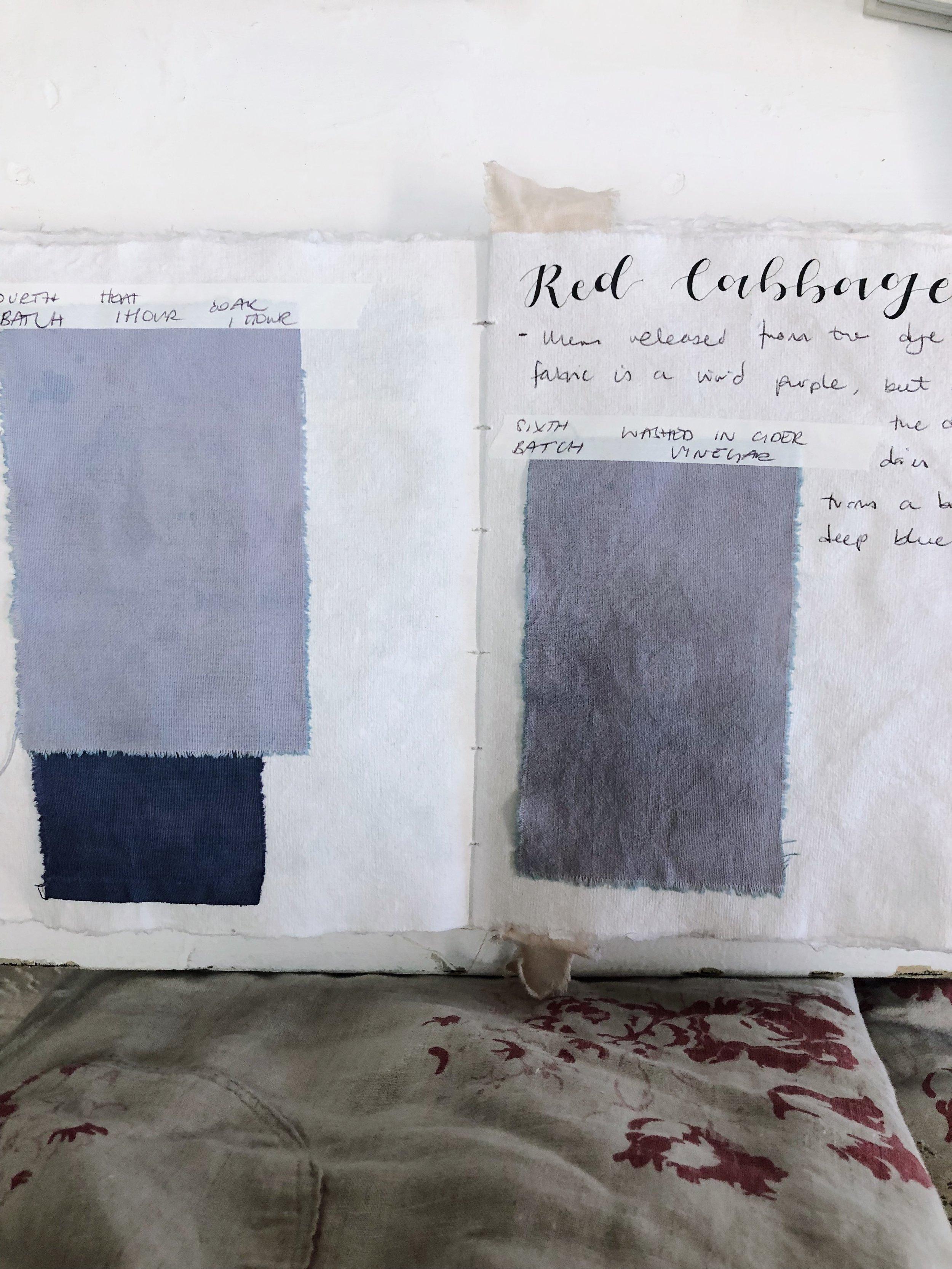 A dye journal by  EdieRoseAshley