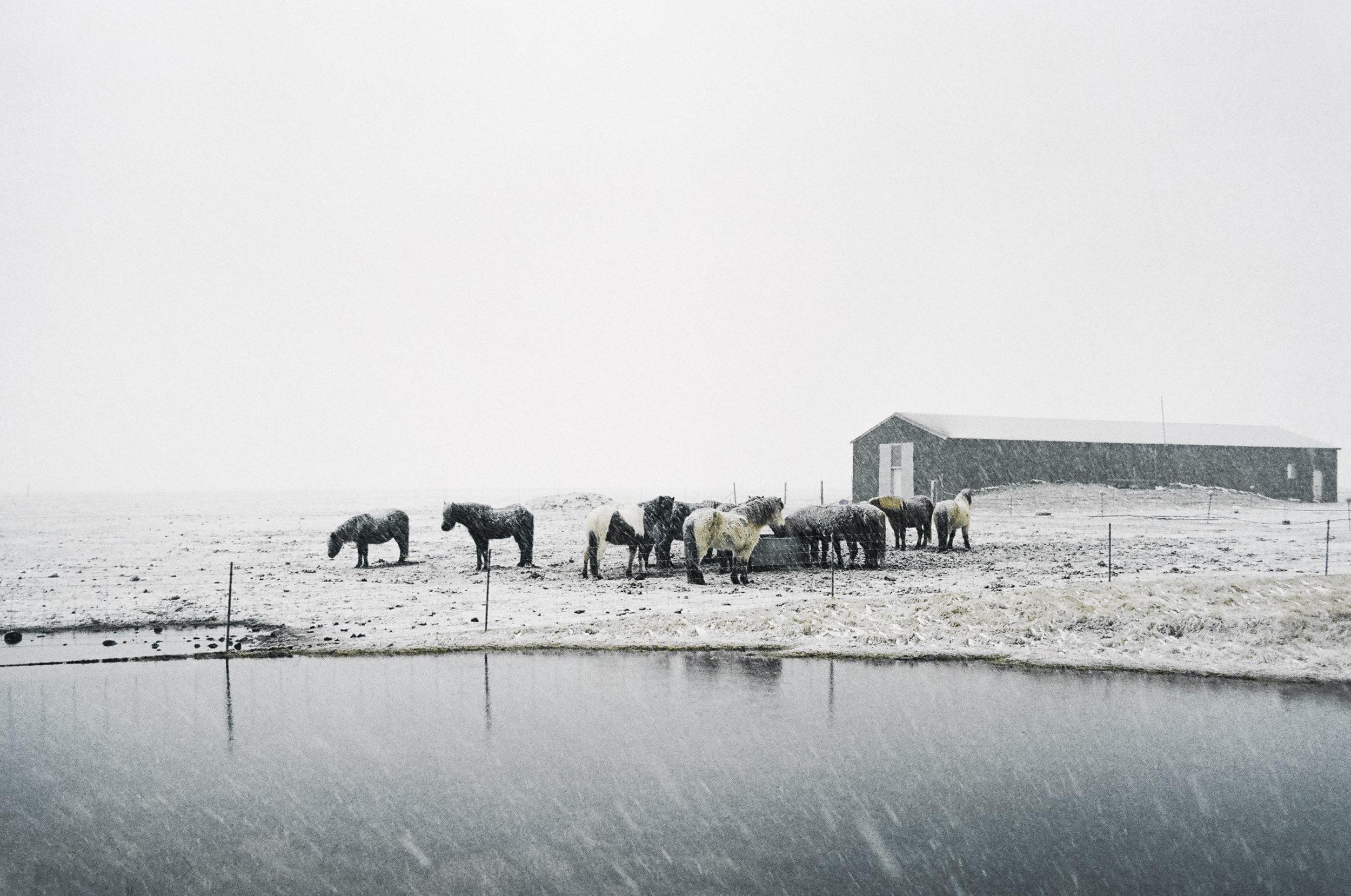 annadosenes-Travel Diary-Glacier-13.jpg