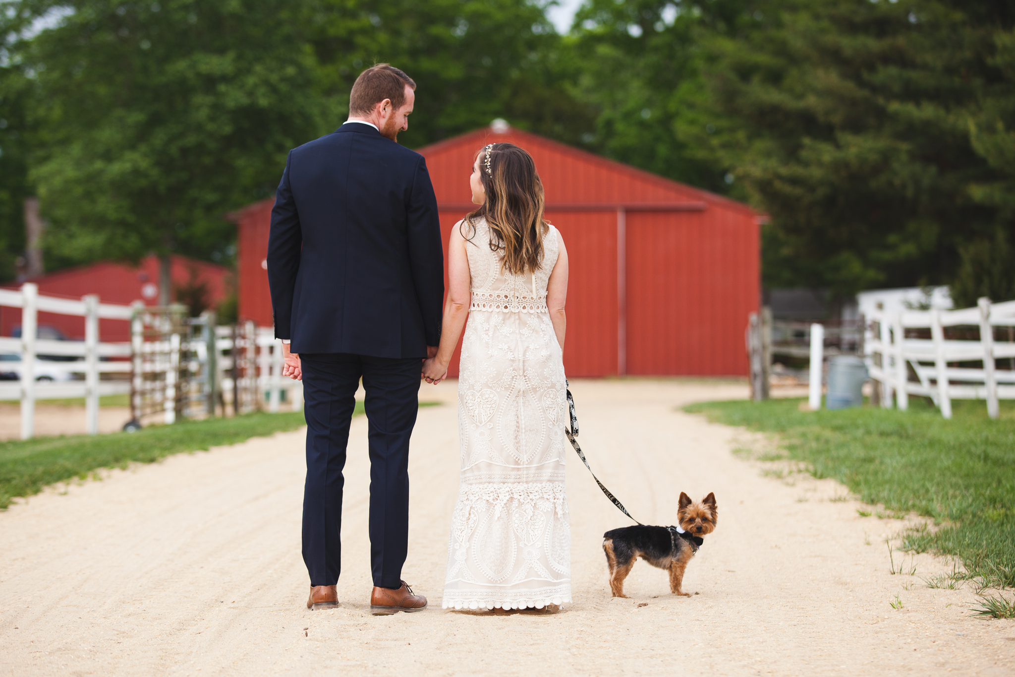 Family Farm Wedding in South Jersey Photography - Rustic Barn NJ - Millville, Vineland, Pittsgrove, Cape May, Ocean City - Creative Photographer, Candid, Joyful, Adventure. Elopement, Casual - Yorkie Puppy Pet Dog