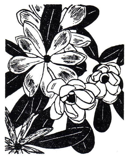 """June 7"" linocut; 4 x 5"" image size, 8 x 9"" paper size; printed on HP55 handmade laid rice paper; edition of 8; 2012; unframed"