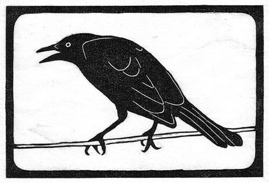 Blackbird - Brewers.jpg