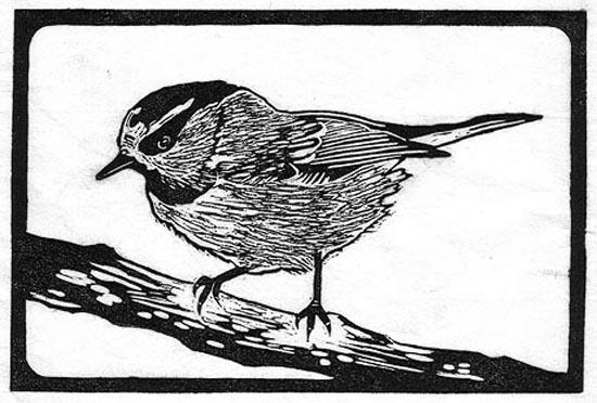 Chickadee - Mountain.jpg