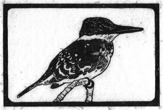 Kingfisher - Green_.jpg